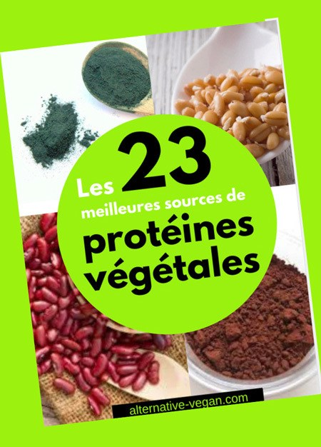 23 meilleurs sources de protéines végétales
