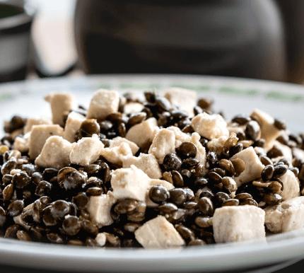 Plat Tofu Vegan